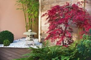 Des plantes vertes mettent en valeur une terrasse en bois